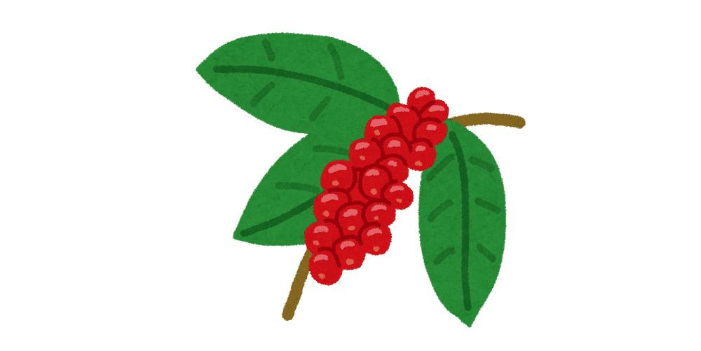 インドネシアの国土と風土が生み出す産地特有のコーヒー