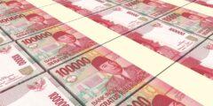 中華系インドネシア人とプリブミ(PRIBUMI)【民主化と経済成長のプロセスの中での心情の変化】
